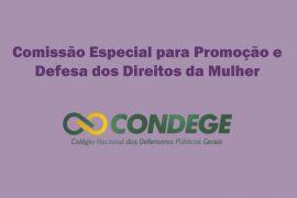 Comissão de Promoção e Defesa dos Direitos da Mulher do CONDEGE divulga nota de esclarecimento sobre delitos sexuais contra mulheres